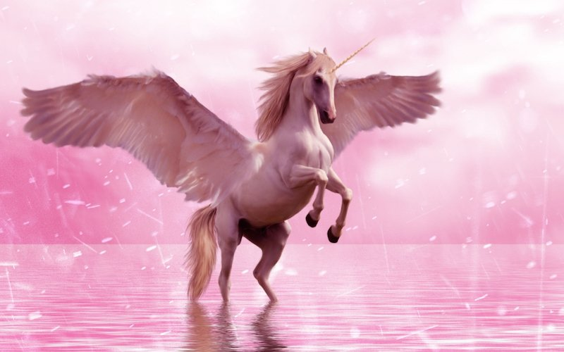 Unicorn flying horse. If it sounds too good to be true, it usually is.